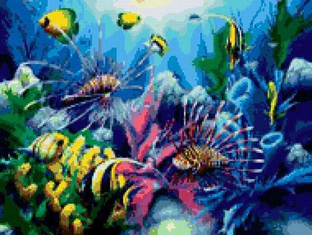 Аквариум, аквариум, рыбы, море