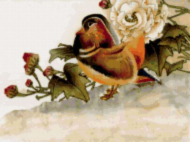 Утка мандаринка, предпросмотр
