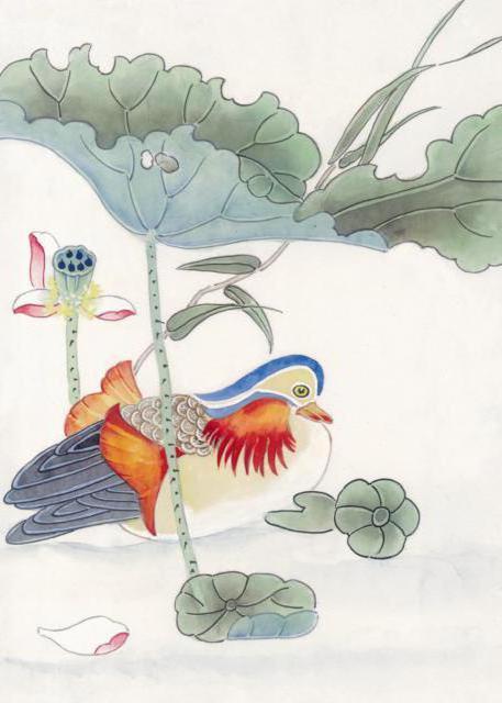 Утка мандаринка, утка, птица