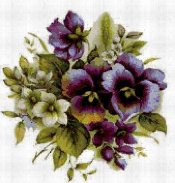 анютки, виола, violets,
