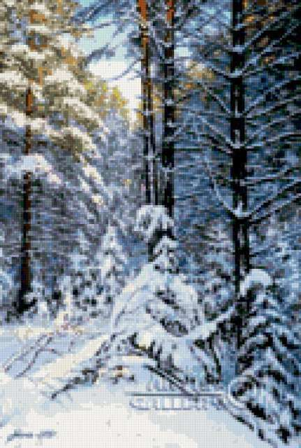 Зима в лесу, зимнее утро,