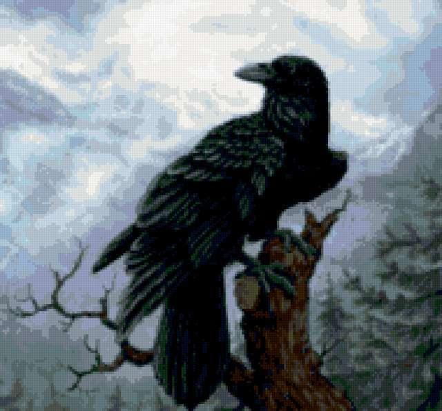 Чёрный ворон, предпросмотр
