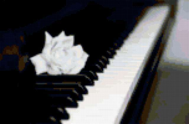 Роза и пианино, предпросмотр
