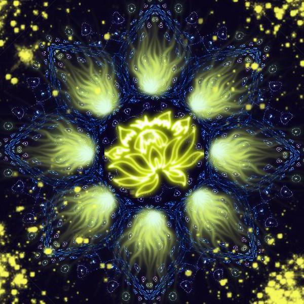 Цветок луны, цветок космос