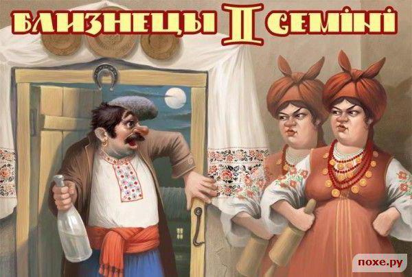 Близнецы (украинский гороскоп)