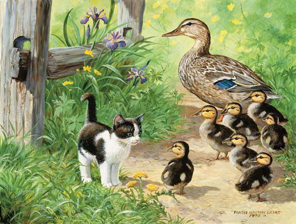 животные, птицы, домашние,