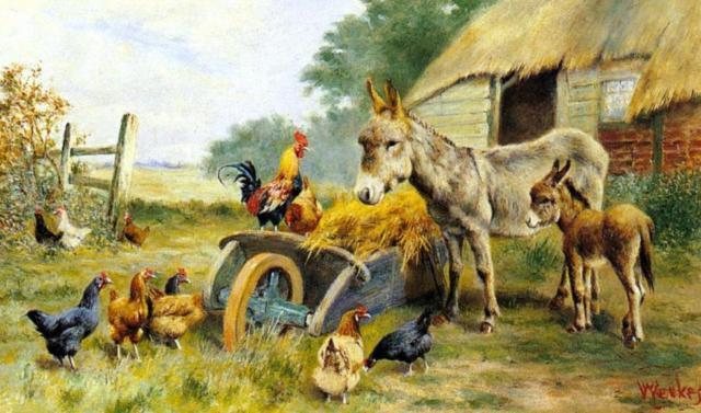 Хозяйство, животные, домашние