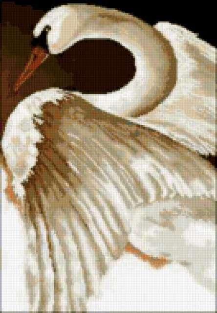 Белый лебедь, предпросмотр