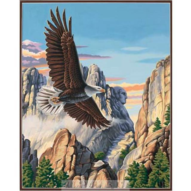 Парящий орел, орел, птицы,