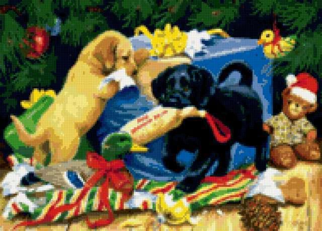 Щенята, собаки, щенки, новый