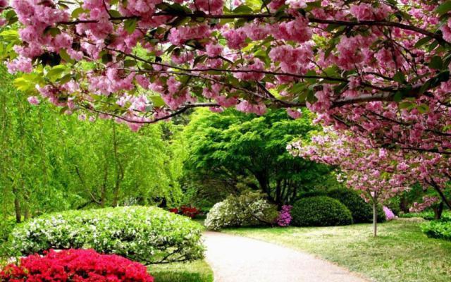 Схема вышивки «Весенний парк»
