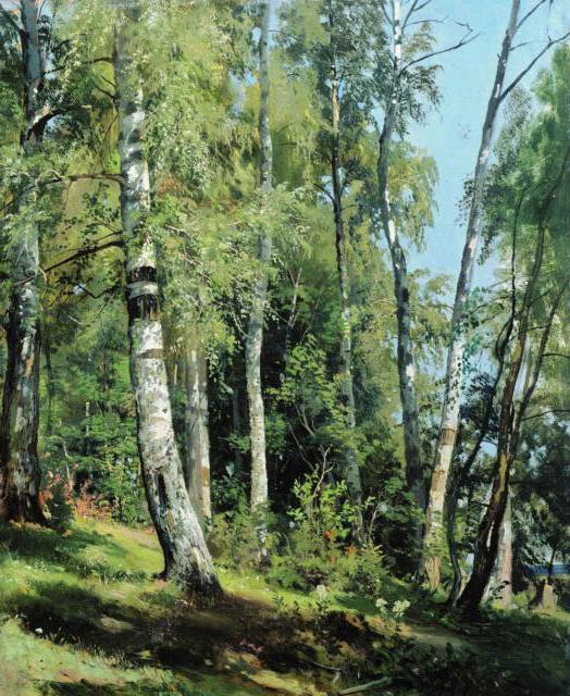 Картины Шишкина.Березовая роща