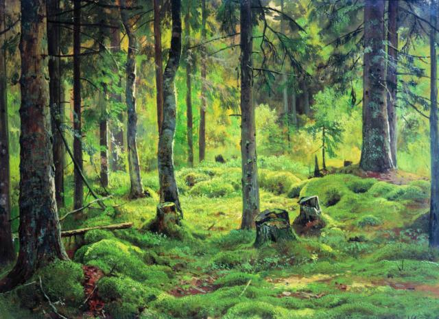 Картины Шишкина.Валежник