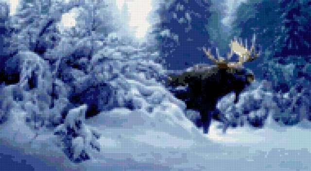 Лось в зимнем лесу,