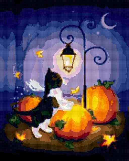 Лунный кот, лунные коты,