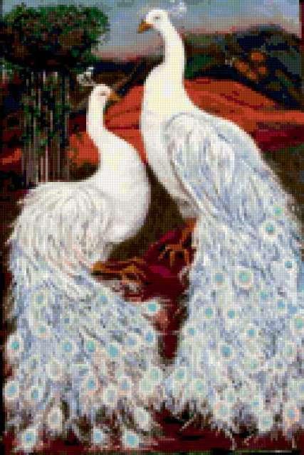 Белые павлины, предпросмотр