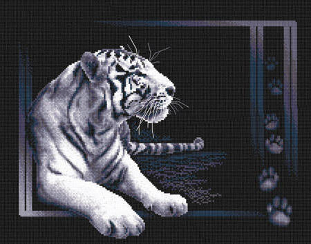 Тигр на черном фоне, оригинал