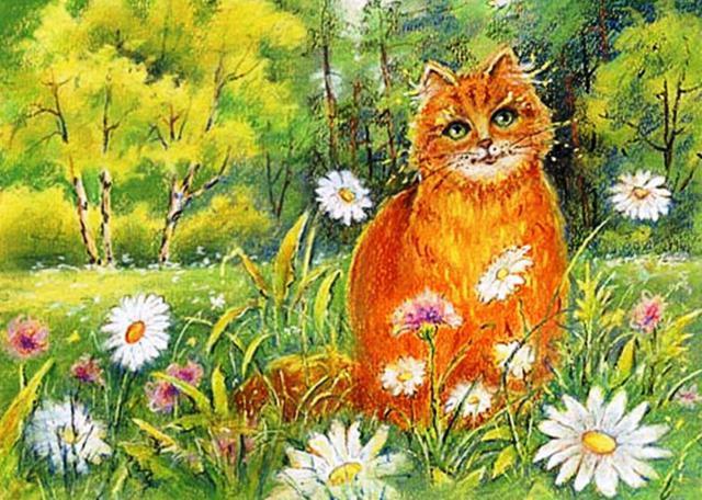 Ромашковый кот коты природа ромашки