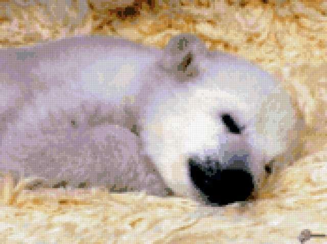 Очень милый спящий