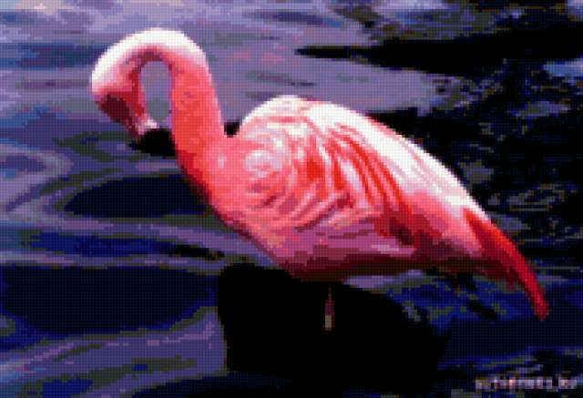 Розовый фламинго))