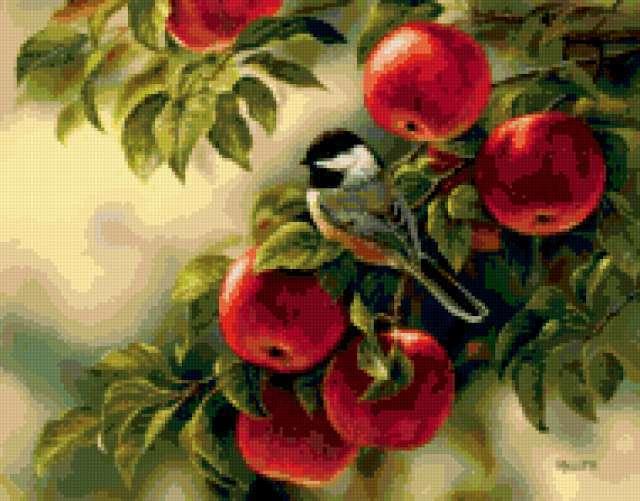 Синица на яблоне, предпросмотр