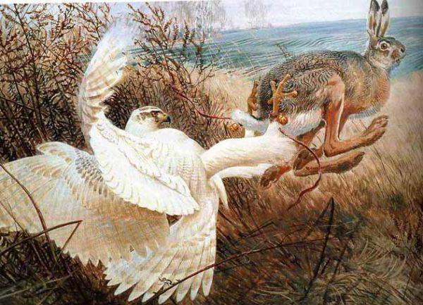 Соколиная охота, оригинал