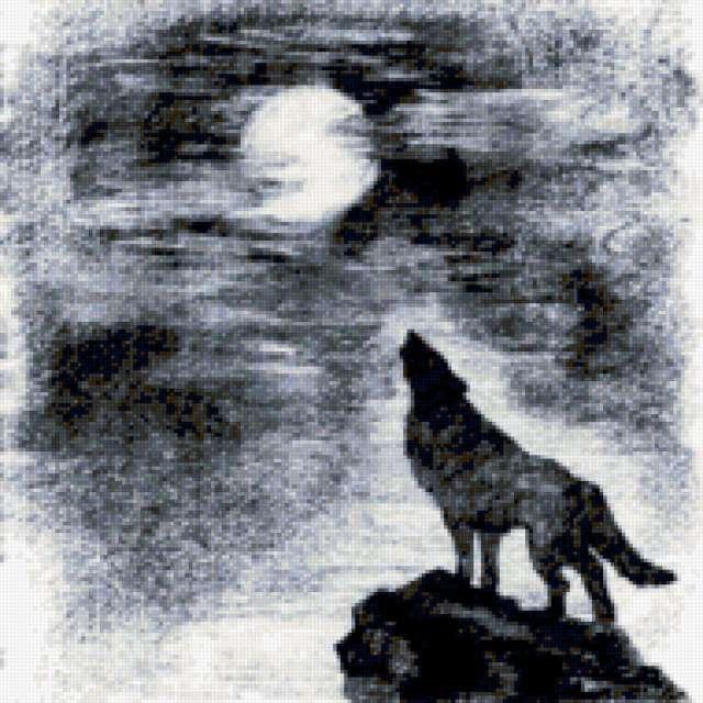 Волк воет на луну,