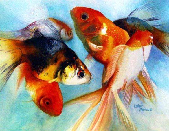 Золотые рыбки, оригинал