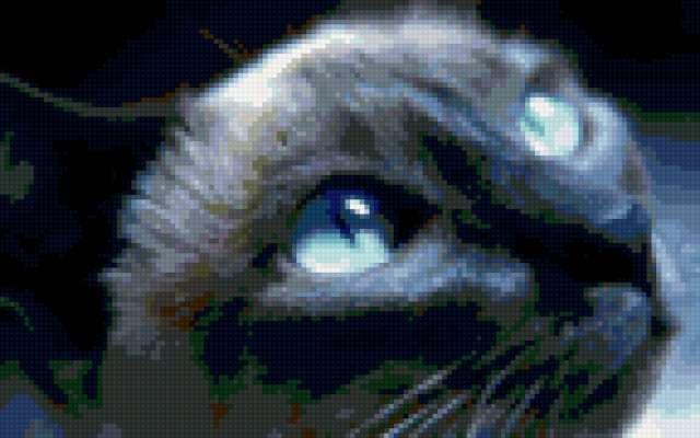 Сиамская кошка, предпросмотр