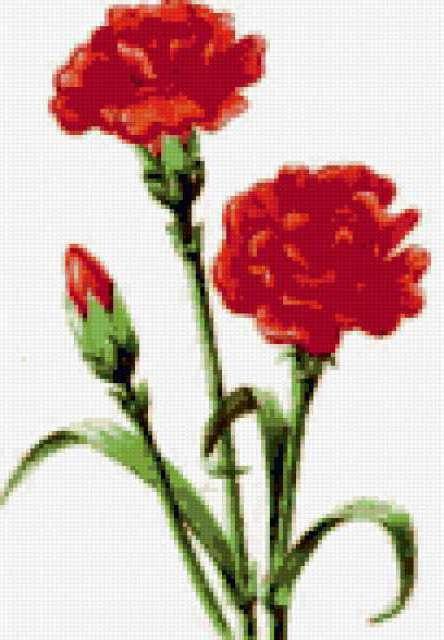 Вышивка цветов гвоздики