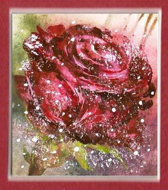 Алая роза, цветы, цветок,