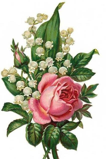 Розы и ландыши, оригинал