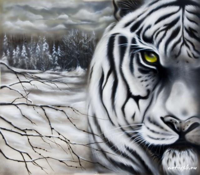 Белый тигр, природа, животные,