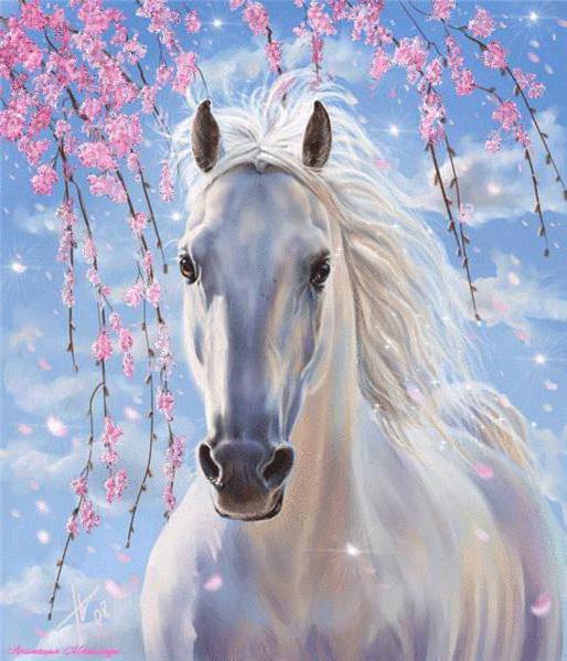 Красивая белая лошадь))