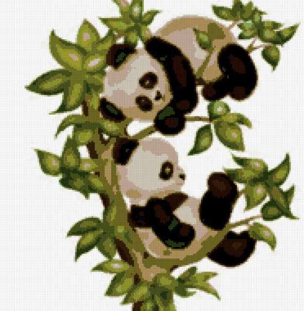 Панды на ветке, предпросмотр