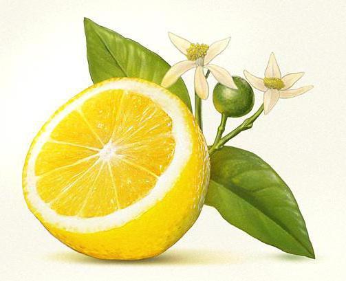 Лимон, натюрморт