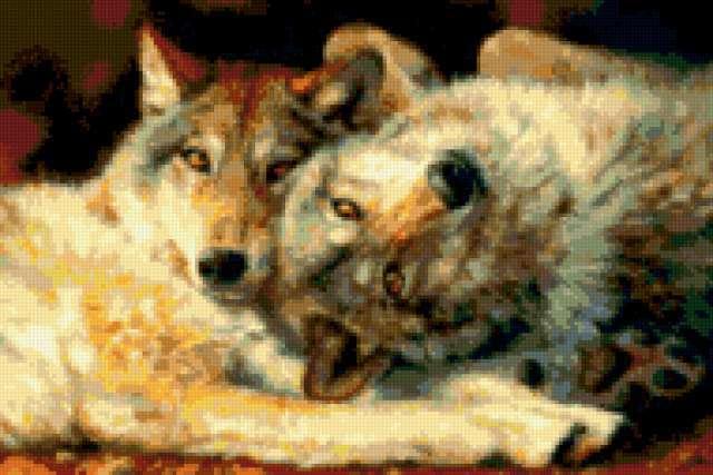 Волчья нежность, предпросмотр