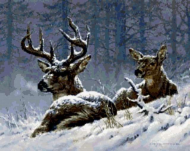Пара оленей, предпросмотр