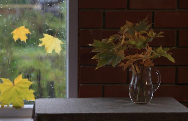 Желтый лист кленовый, оригинал