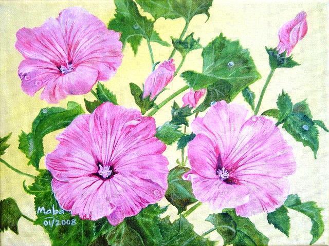 Гибискус, цветы, цветочное