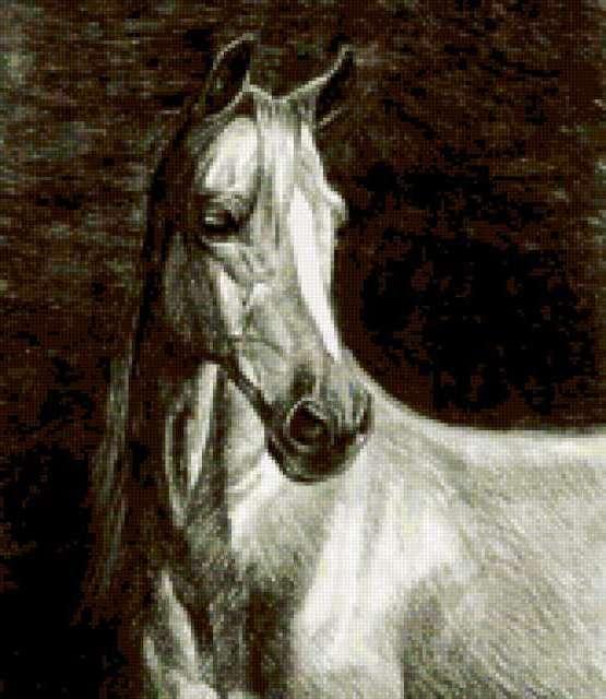 Лошади, природа, животные