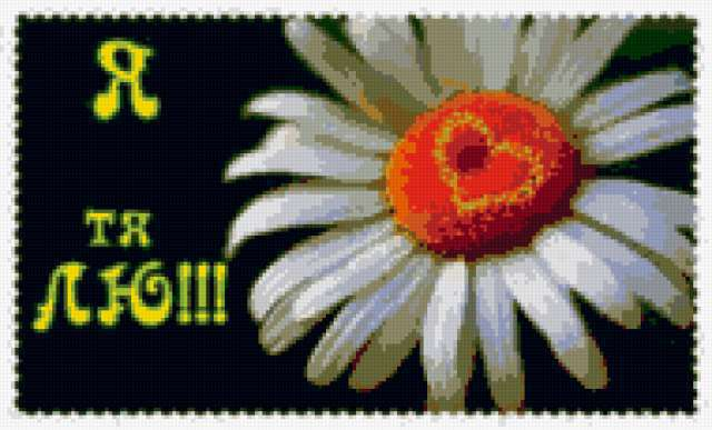Я тебя люблю, ромашка, цветы,