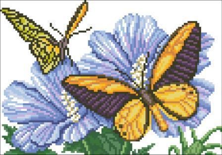 Цветы и бабочки, цветы и