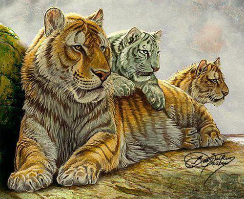 Тигрица с тигрятами, оригинал
