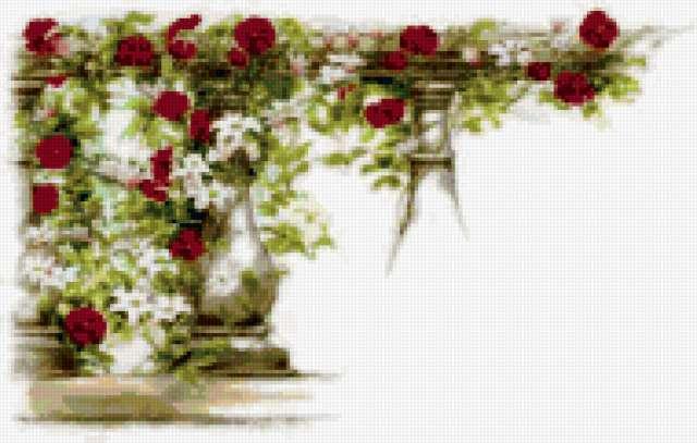 Плетистые розы, предпросмотр