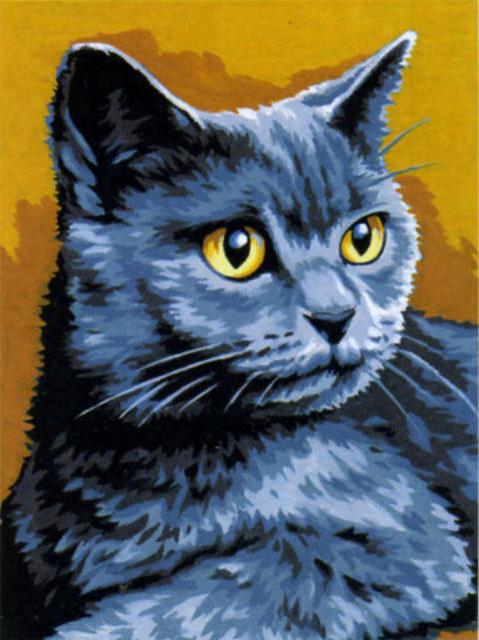 Голубой кот, кошка, голубой,
