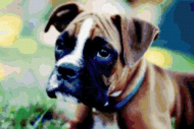 Собака боксер, предпросмотр
