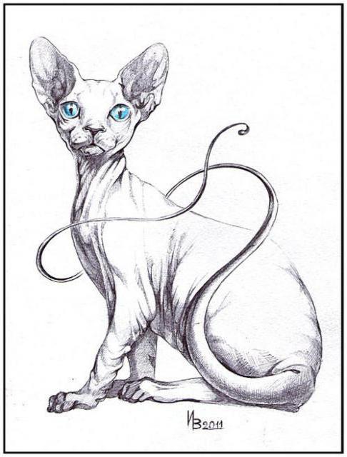 Египетская кошка, оригинал