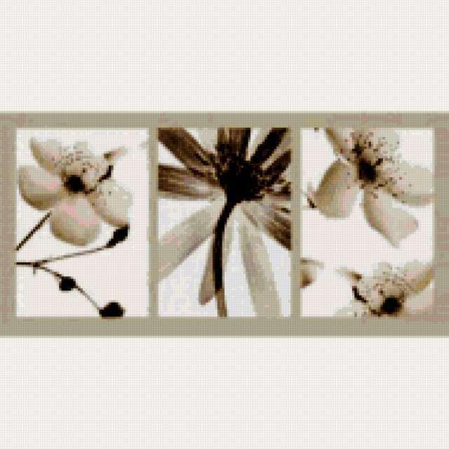 Триптих Цветы монохром