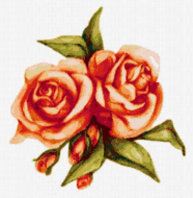К схеме вышивки «Подушка Розы»